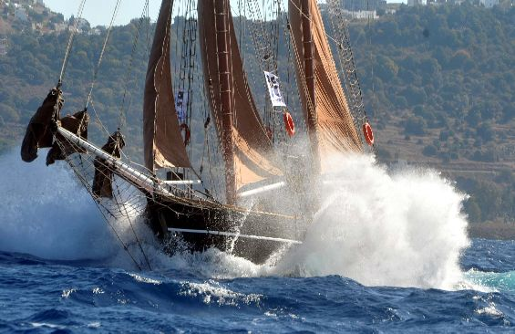 Tall Ship Rhea Regatta Racing