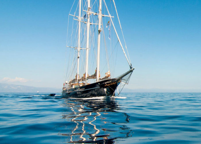 Classic Sailing Yacht Malcolm Miller Bow