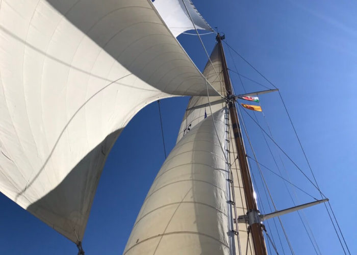 Classic Sailing Yacht Halcyon Under Sail