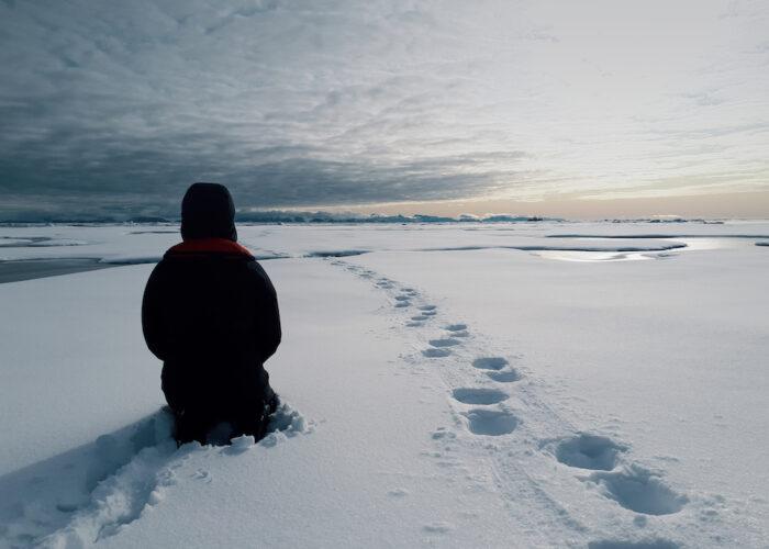 togo ice view