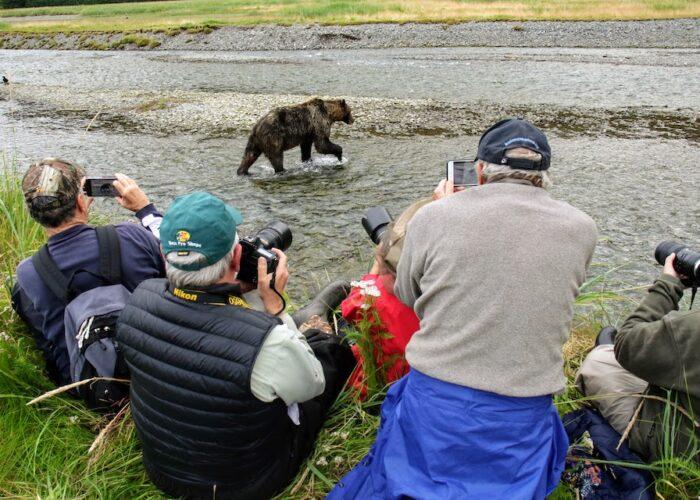 Sacajawea Bear Watching